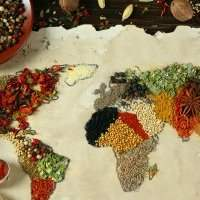Intercultural Cooking Club - Mercredi 22 janvier 10:00-15:00